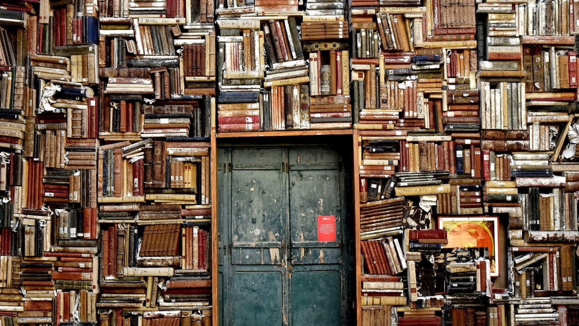 Une étagère pour ranger tous vos livres et vos bibelots